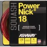 Ashaway Power Nick 18 Zytek