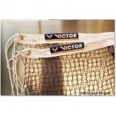 Victor Netz A Professional